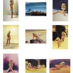 Assortiment de 9 cartes postales de Colombe-0