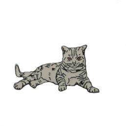 Chat tigré gris couché-0