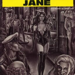 The perversions of Jane (version anglaise)-0